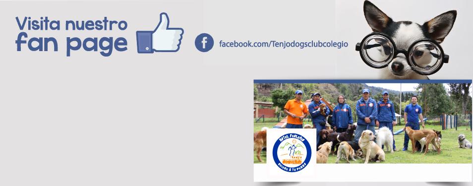 Visita nuestro Fan Page